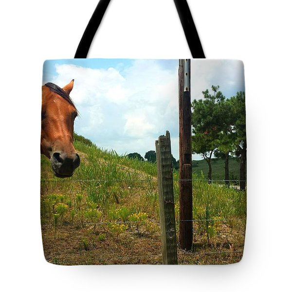Friendly Stallions Tote Bag