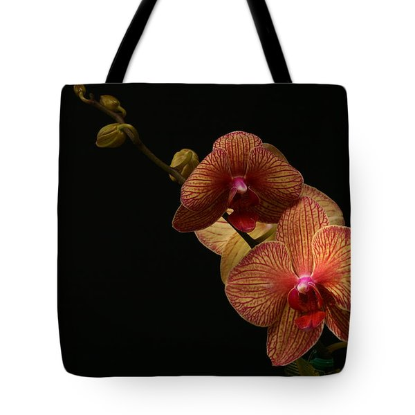 Friendship Tote Bag by Doug Norkum