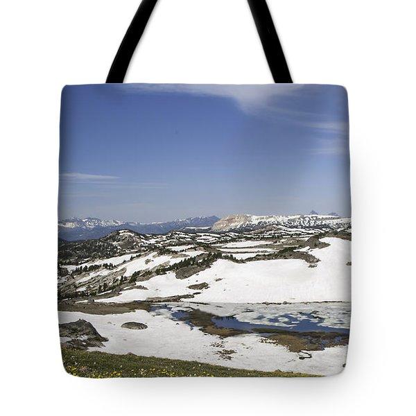 Frozen Lake  Beartooth Highway Tote Bag