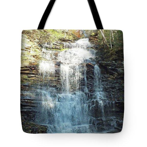 Ricketts Glen Ganoga Falls Four Tote Bag