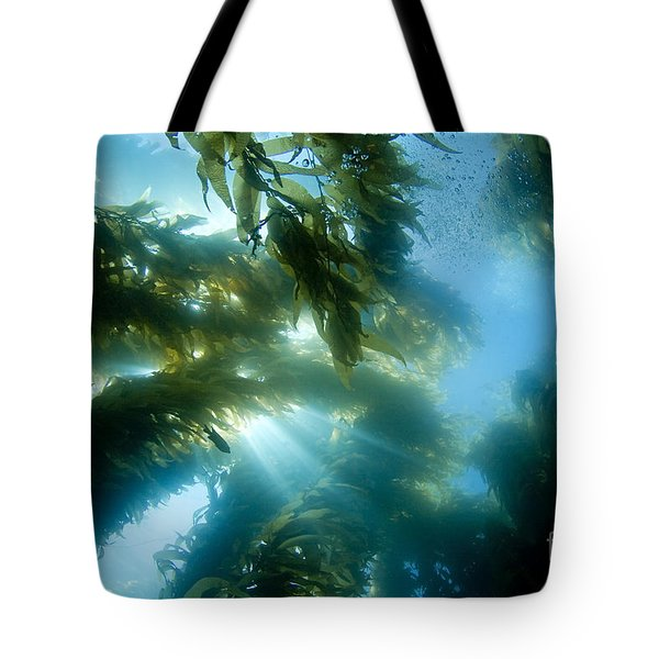 Giant Kelp Forest Tote Bag by Dave Fleetham - Printscapes