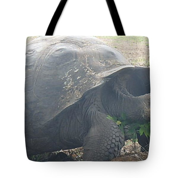 Giant Tote Bag by Will Burlingham