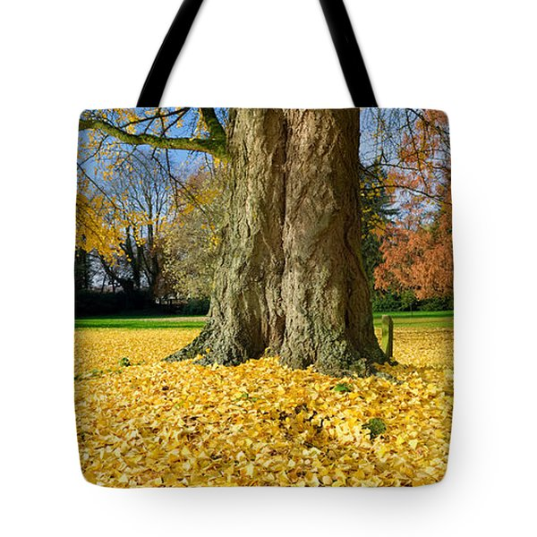 Tote Bag featuring the photograph Ginkgo Tree by Hans Engbers