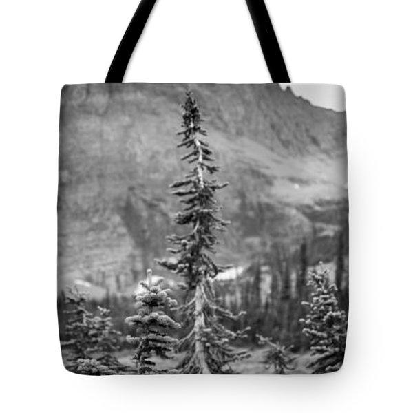 Gnarled Pines Tote Bag