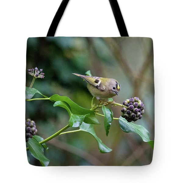 Goldcrest Tote Bag by Matt Malloy