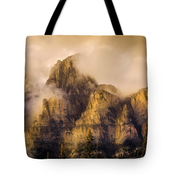 Tote Bag featuring the photograph Golden Glow by Ronald Santini