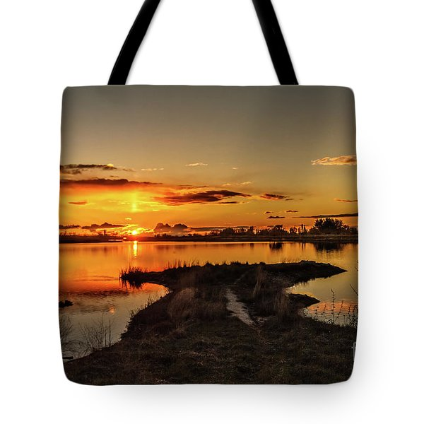 Golden View Tote Bag by Robert Bales