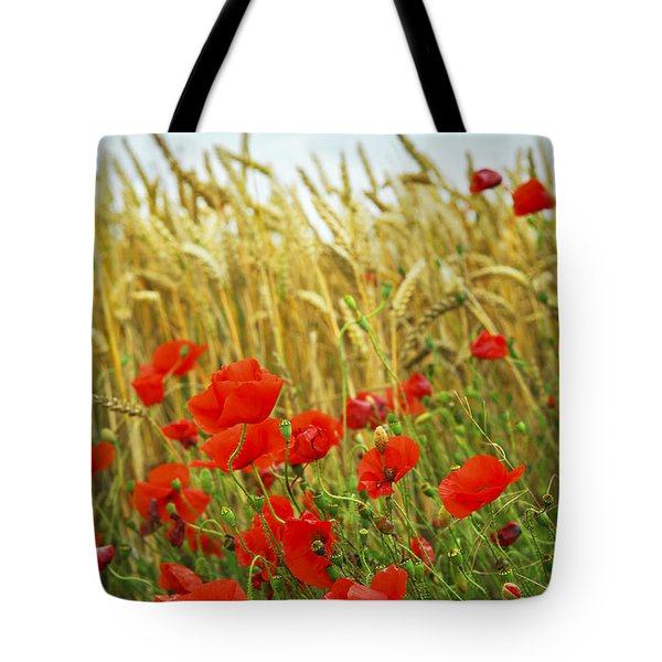 Grain And Poppy Field Tote Bag by Elena Elisseeva
