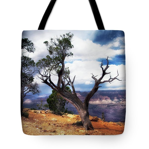 Grand Canyon Tote Bag by James Bethanis