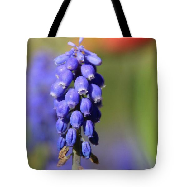 Tote Bag featuring the photograph Grape Hyacinth by Chris Berry