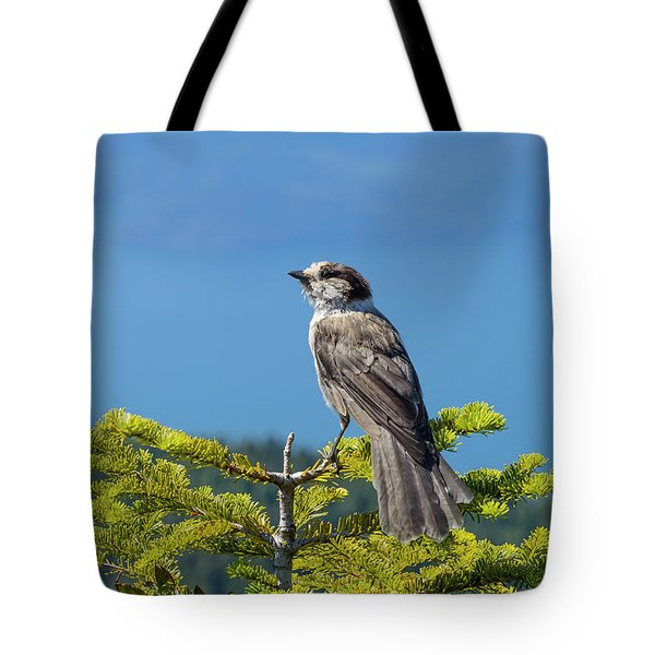 Tote Bag featuring the photograph Gray Jay by Kathy King