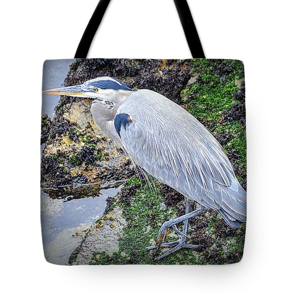 Tote Bag featuring the photograph Great Blue Heron by AJ Schibig
