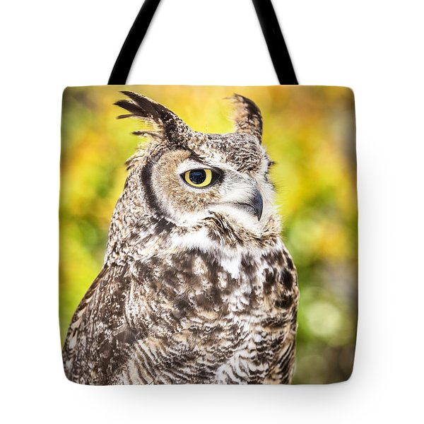 Great Horned Owl Large Canvas Art, Canvas Print, Large Art, Large Wall Decor, Home Decor, Photograph Tote Bag