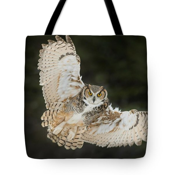 Great Horned Owl Wingspread Tote Bag
