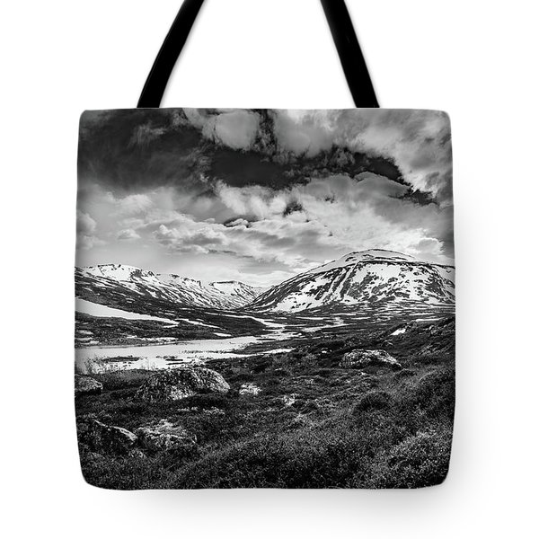 Tote Bag featuring the photograph Green Carpet Under The Cotton Sky by Dmytro Korol