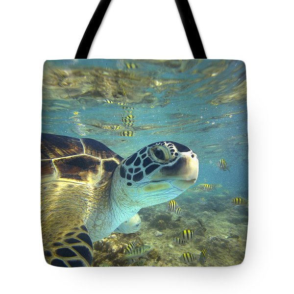 Tote Bag featuring the photograph Green Sea Turtle Balicasag Island by Tim Fitzharris