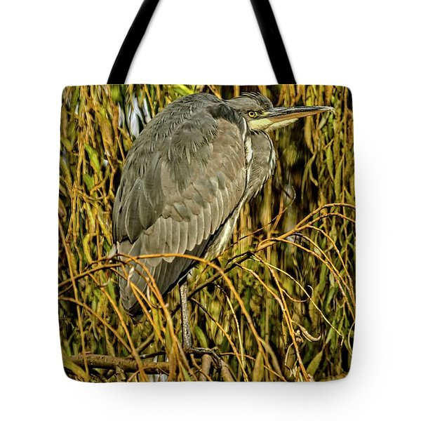 Tote Bag featuring the photograph Grey Heron by Cliff Norton