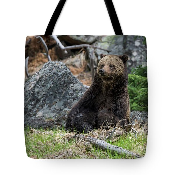 Grizzly Manor Tote Bag