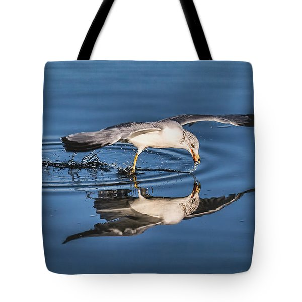 Gull Reflection Tote Bag by Susi Stroud