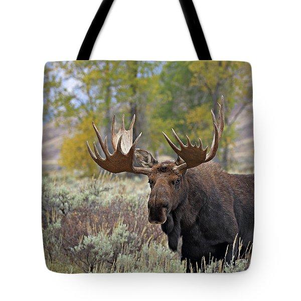 Handsome Bull Tote Bag