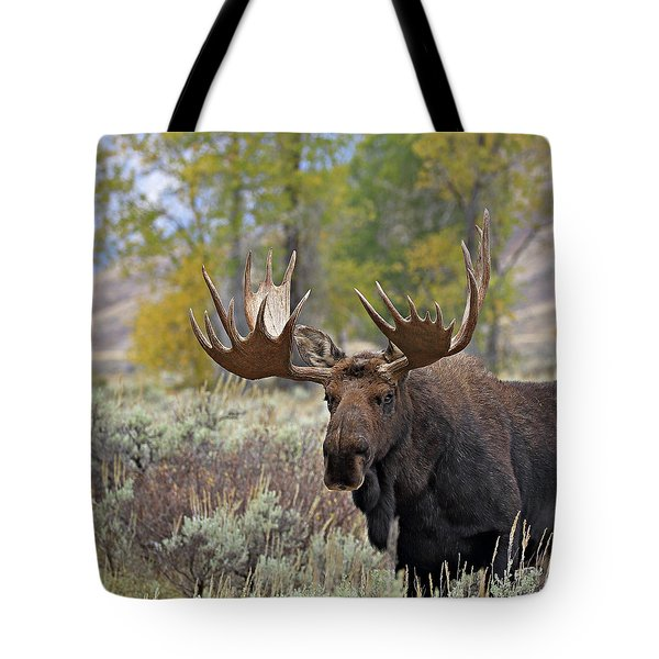 Handsome Bull Tote Bag
