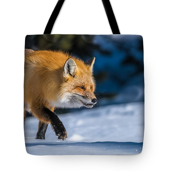 Tote Bag featuring the photograph Handsome Mr. Fox by Yeates Photography