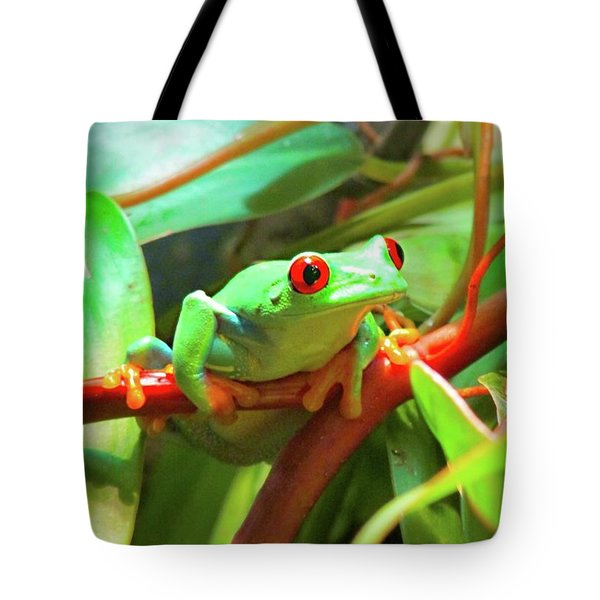 Hangin' In There Tote Bag