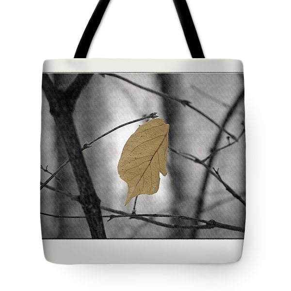 Hanging In The Balance Tote Bag by Sue Stefanowicz