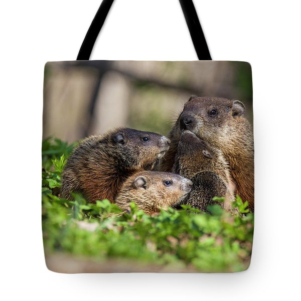 Happy Family Tote Bag by Mircea Costina Photography