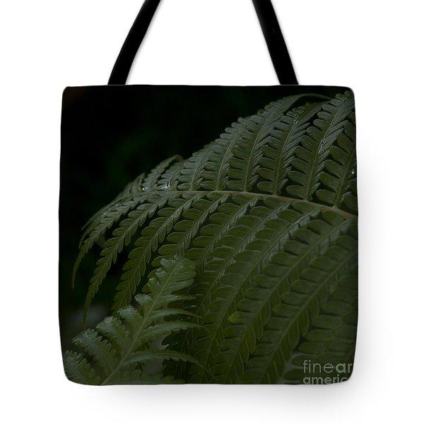 Hapuu Pulu Hawaiian Tree Fern  Tote Bag by Sharon Mau