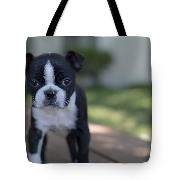Harley As A Puppy Tote Bag