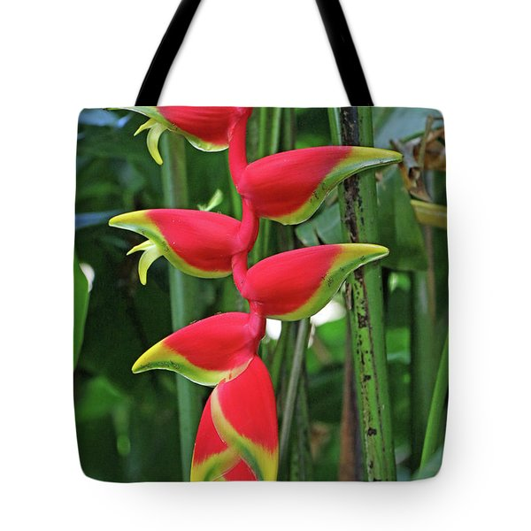 Hawaii Flora Tote Bag by Denise Moore
