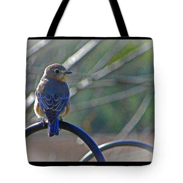 Hello Bluebird Tote Bag
