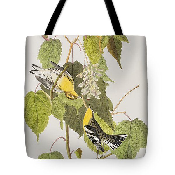 Hemlock Warbler Tote Bag by John James Audubon