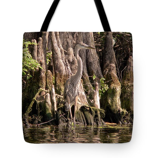 Tote Bag featuring the photograph Heron And Cypress Knees by Steven Sparks