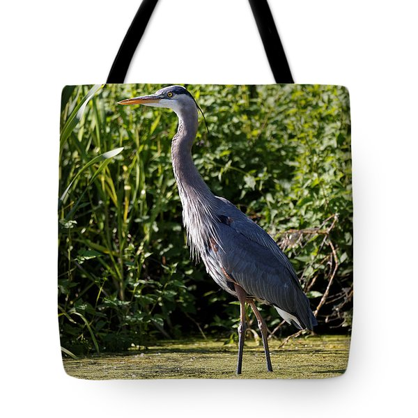 Tote Bag featuring the photograph Heron In The Marsh by Sue Harper