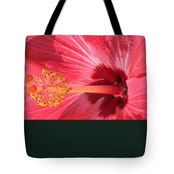 Tote Bag featuring the photograph Hibiscus by Kay Gilley