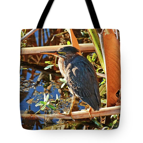 Tote Bag featuring the photograph Hiding In Plain Sight by Sally Sperry