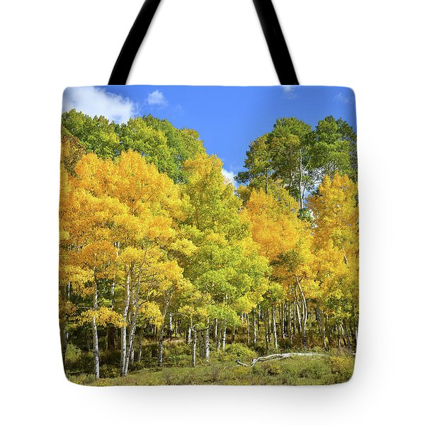 Tote Bag featuring the photograph High Country Aspens by Ray Mathis