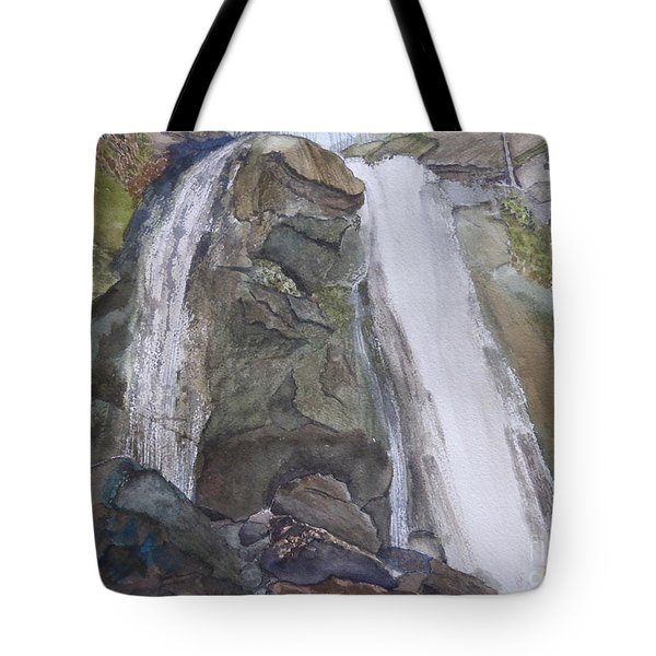 Tote Bag featuring the painting High Shoals Falls by Joel Deutsch