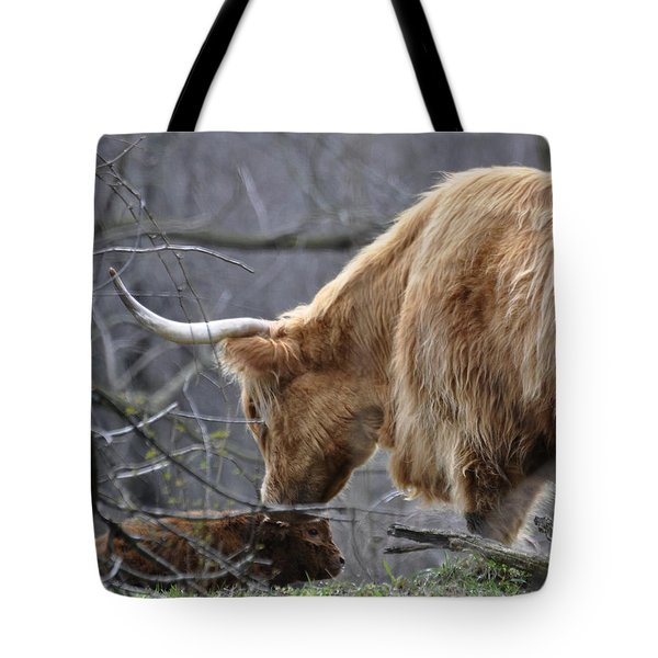 Highland New Born Tote Bag