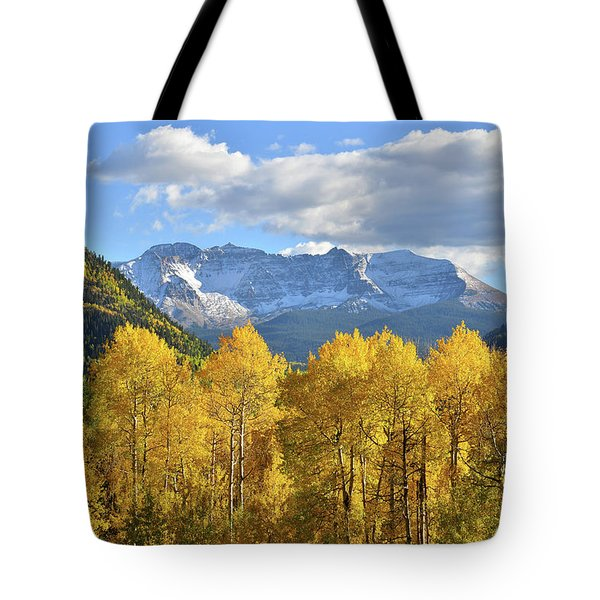 Tote Bag featuring the photograph Highway 145 Colorado by Ray Mathis