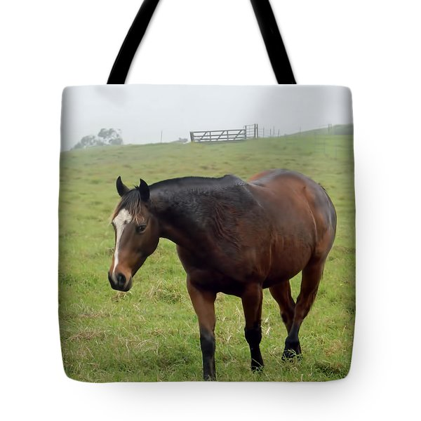 Horse In The Fog Tote Bag