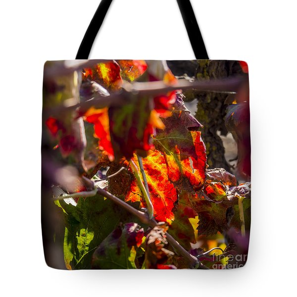 Hot Autumn Colors In The Vineyard 05 Tote Bag