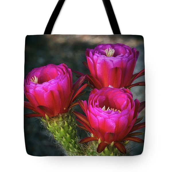Tote Bag featuring the photograph Hot Pink  by Saija Lehtonen