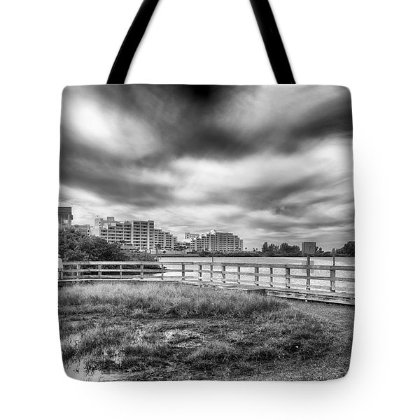 Tote Bag featuring the photograph Hudson Beach by Howard Salmon