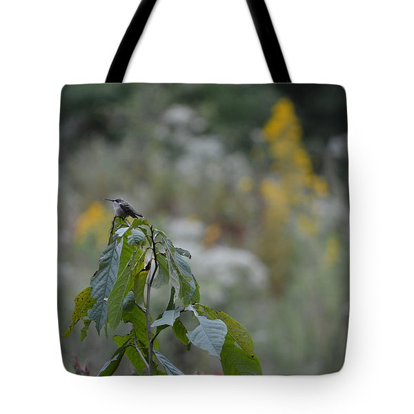Humming Bird Tote Bag by Linda Geiger
