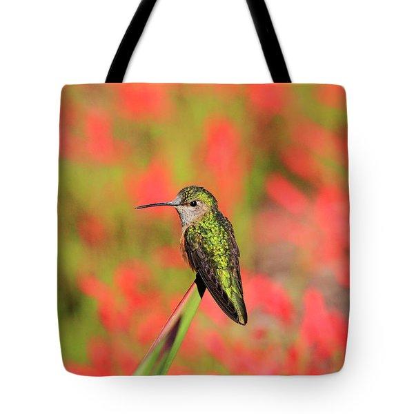 Hummingbird #5 Tote Bag