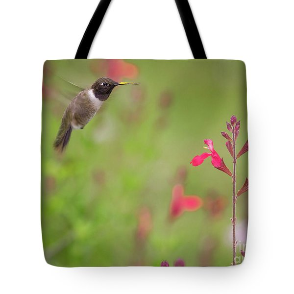 Hummingbird And Sage Tote Bag