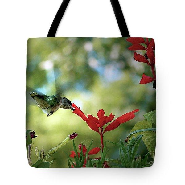 Hummingbird Delight Tote Bag by Sue Stefanowicz